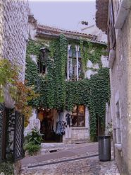 A storefront with ivy - Saint-Paul de Vence, Alpes-Maritimes department, France. (Photo credit: Wikipedia)